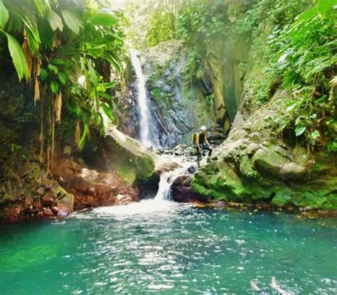Canyon Guadeloupe (Deshaies) - 2020 All You Need to Know