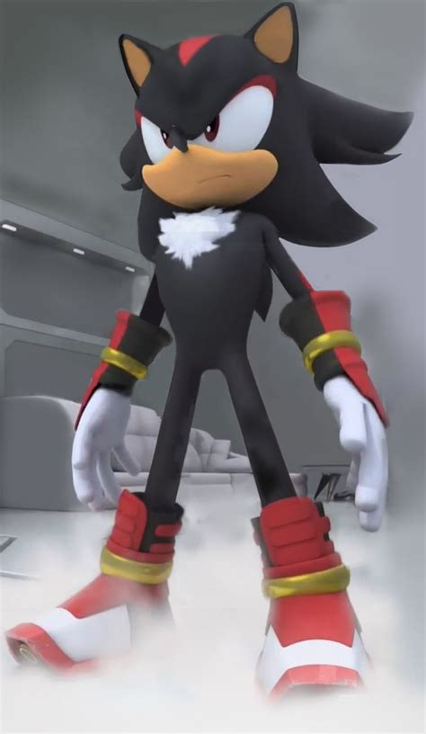 SHADOW IS IN THE SONIC BOOM T