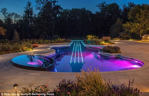 Banker builds swimming pool shaped like a violin | Daily