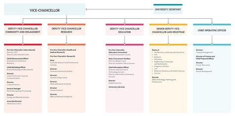 Management structure : Annual report : The University of