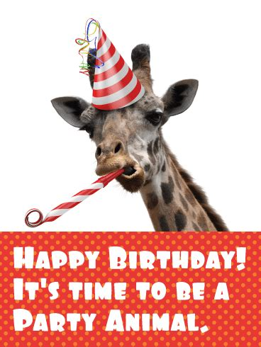 Time to be a Party Animal! Funny Birthday Card | Birthday
