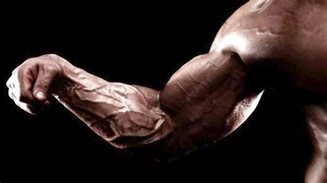 Massive Forearms, Strong Grip | T Nation