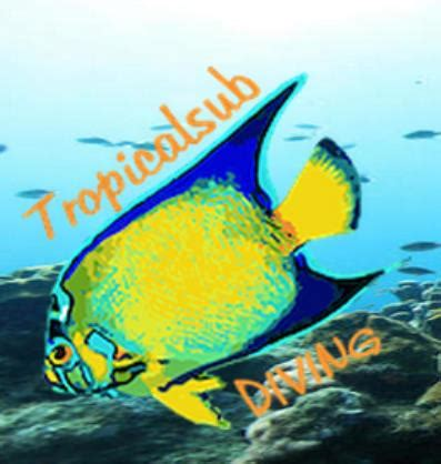 Tropical Sub Dive Shop or Center in Deshaies, Guadeloupe